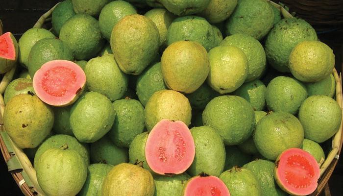 google-guava