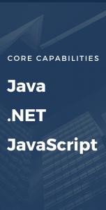 java .net javascript (2)