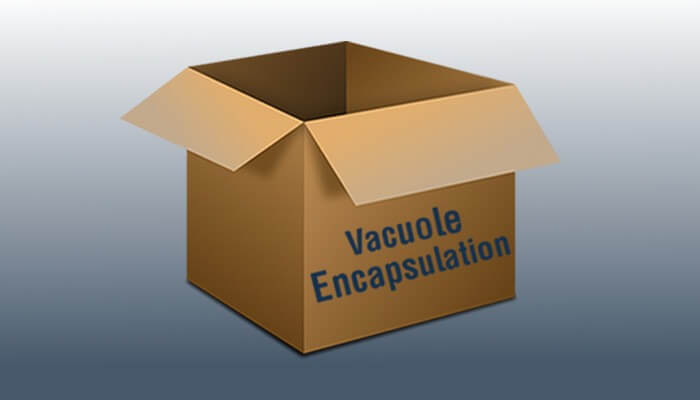 Vacuole Encapsulation